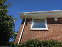 White tongue & groove soffit with square guttering